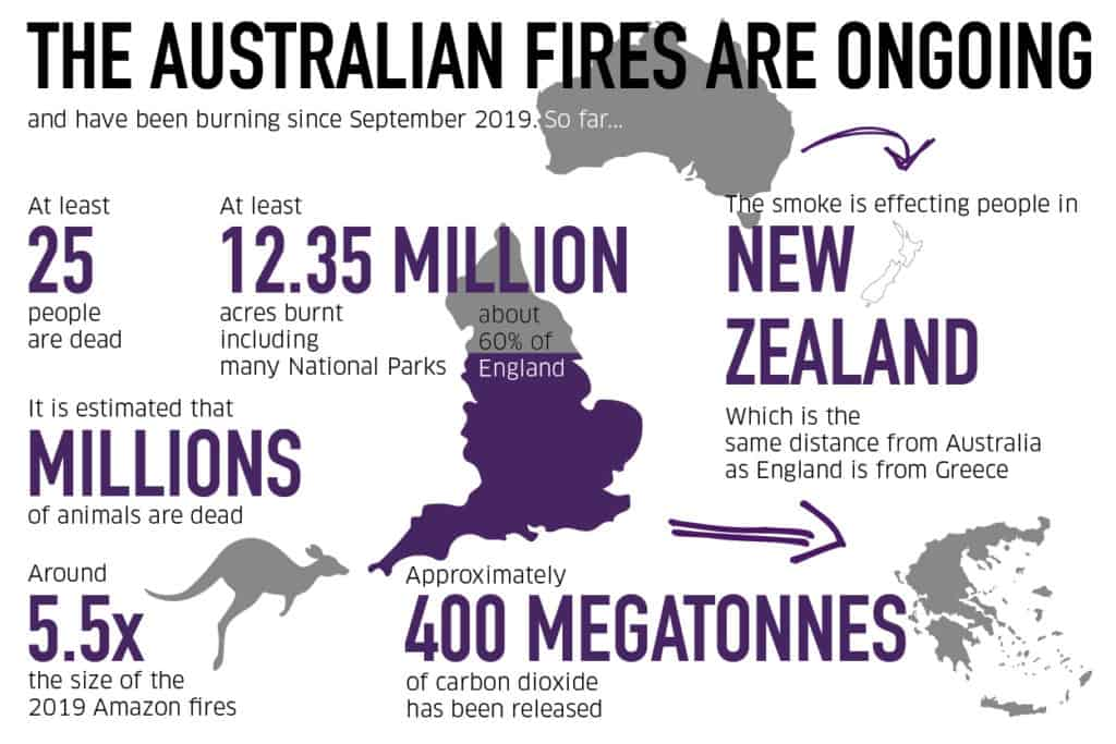 An info-graphic about statistics from the Australian Bushfires